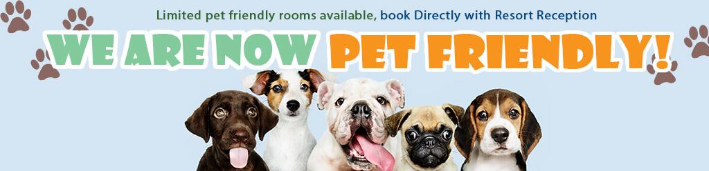 pet friendly resort